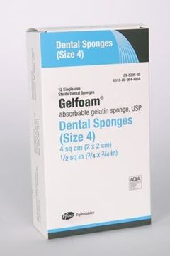 Picture of GELFOAM SIZE 4